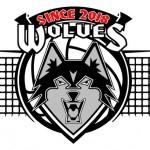 WIS-Wolves-VBall